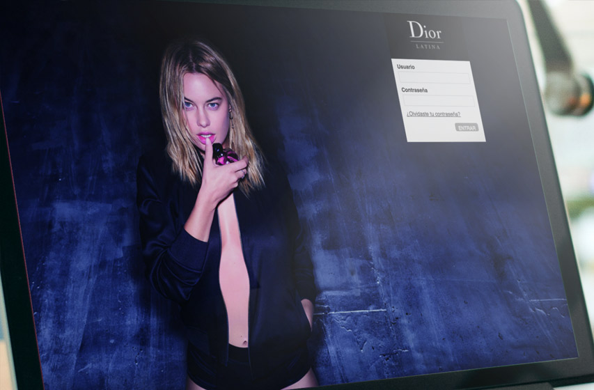 LVMH, Dior Web Application